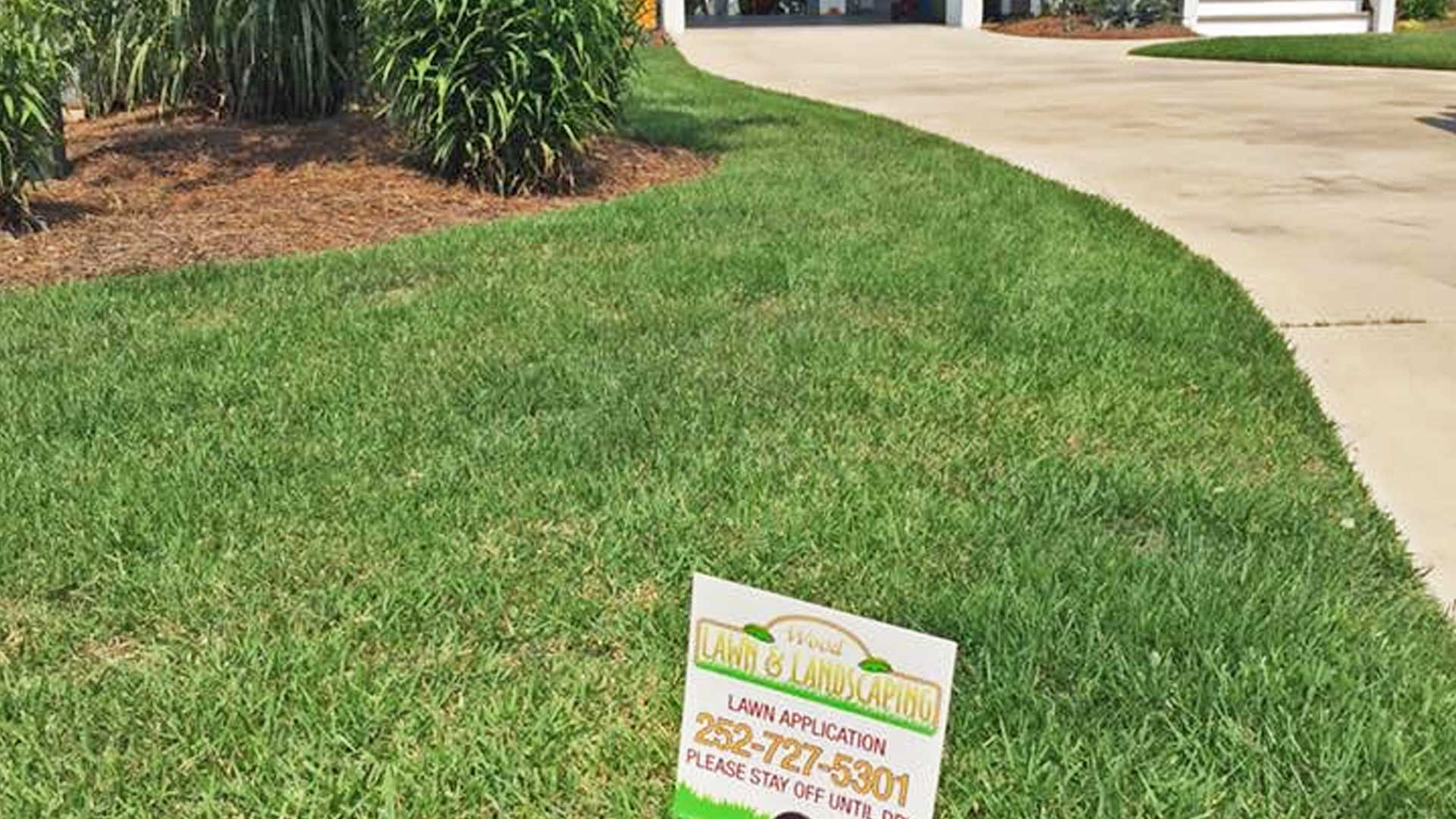 Close up photo of a lawn that receives lawn treatments through our lawn care program.