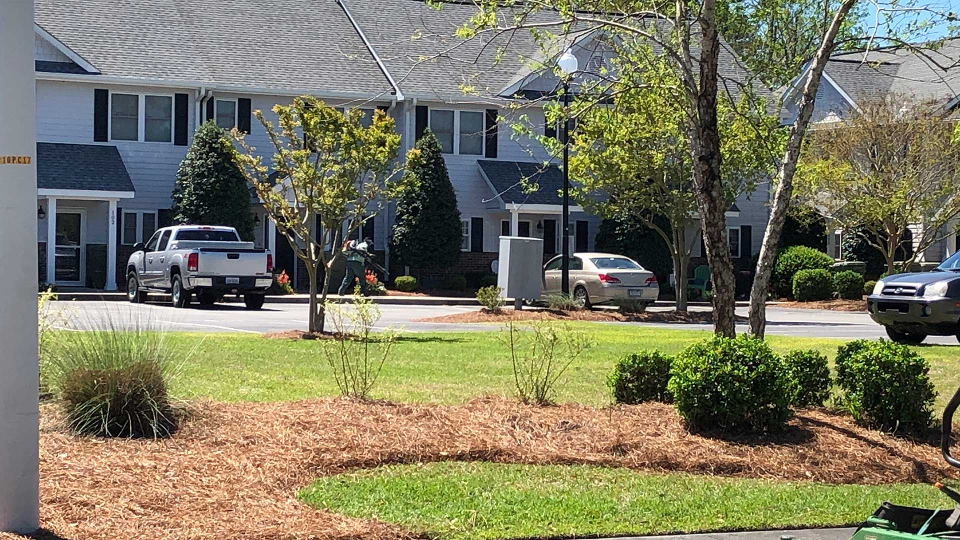 Landscape maintained for a condo community in Morehead City, NC.