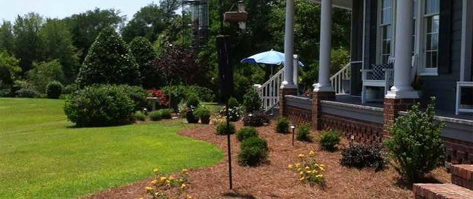 Home landscaping with plantings near Swansboro, NC.
