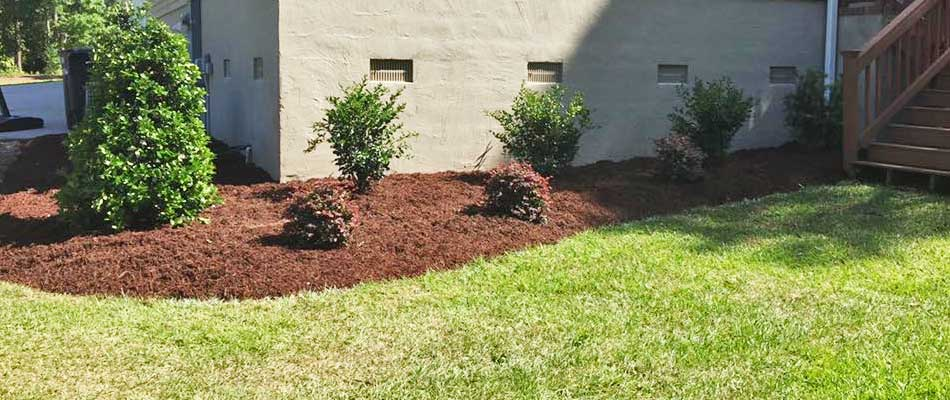 Shredded bark mulch installed in the landscaping beds at a home in Atlantic Beach, NC.
