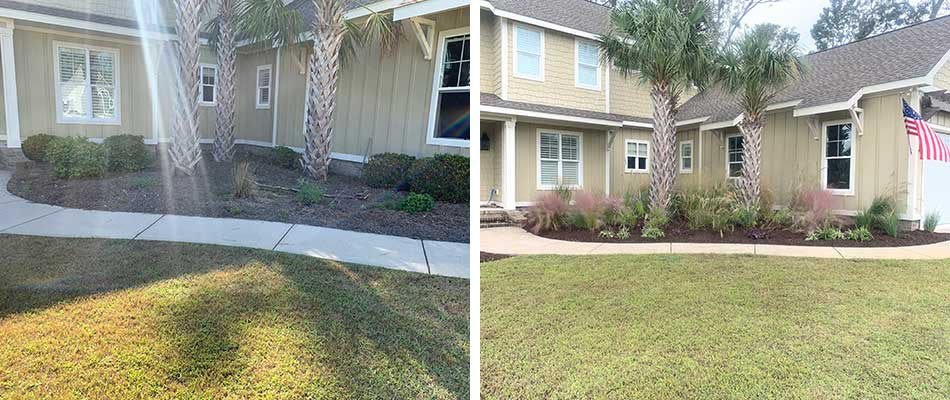 Landscaping bed before and after in Newport, NC.