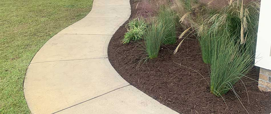 Landscaping bed with chocolate mulch in Newport, NC.