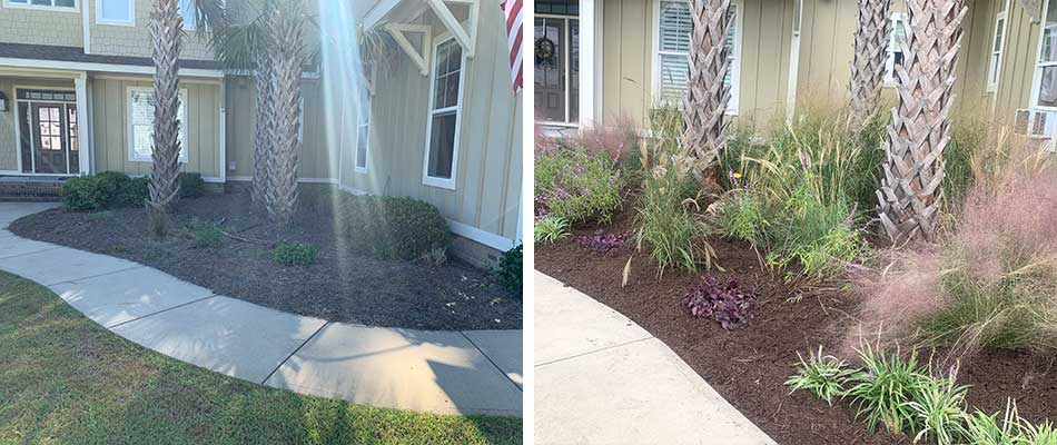 Landscape Bed Renovation in Newport, NC